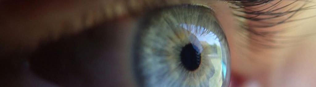 life-sciences-retina-CaroruselCrop